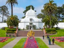 Experience San Francisco in Bloom.