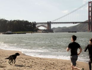 If you're stuck at home, it's important to stay healthy. Try these San Francisco workouts, meditations, and other self-care tips.