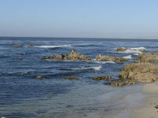 Monterey beaches