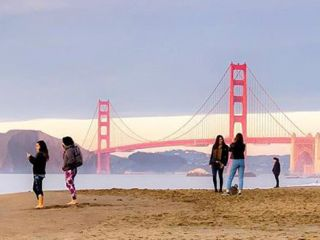 This small, secluded stretch of sand is one of San Francisco's best-kept secrets.