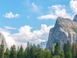 There are plenty of tours that can take you from San Francisco to Yosemite National Park. Here are the top Yosemite tours we recommend.
