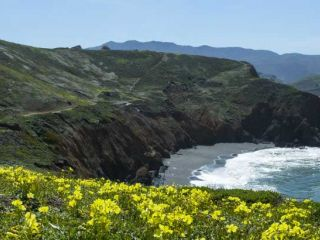 Go explore the California Coast