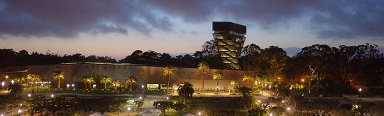de Young at night