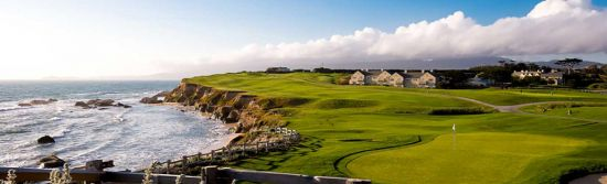 Public and private golf courses of incredible quality can be found within city limits and throughout the Bay Area.