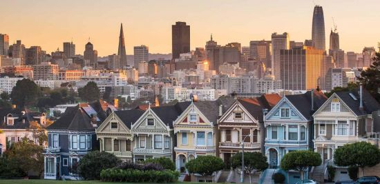 Painted Ladies at dusk.
