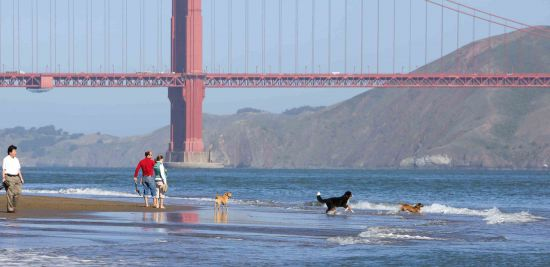 These San Francisco destinations are wonderful year-round; but in summer, they're really something special.