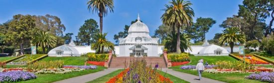 Find out how to plan your visit to one of San Francisco's most beautiful attractions, the Conservatory of Flowers.